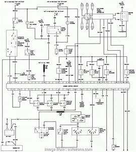 Electrical Wiring Diagram Nt  Component 247 Professional