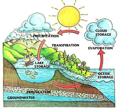 Water Cycle Process