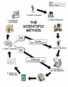 Scientific Method Worksheet High School Biology - 1000 ...