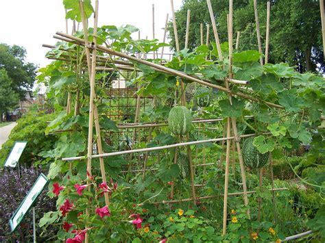 ecolo bio nature permaculture urbaine et jardinage bio
