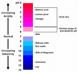 Chemistry Acids and Bases