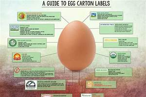 Everything You Need To Know About Egg Labels
