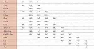 Bra Size Chart Thirdlove