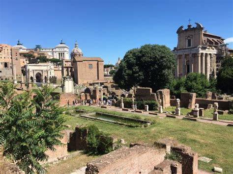 Ingresso Colosseo by Parco Archeologico Colosseo Ingresso Gratuito Roma