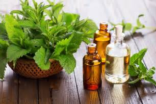 Pictures of Peppermint Oil