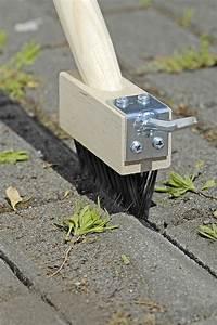 Moos Aus Fugen Entfernen : moos entfernen pflaster sauberes pflaster moos von ~ Lizthompson.info Haus und Dekorationen