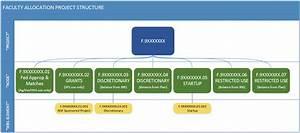 Financial Structure And Master Data Establishment