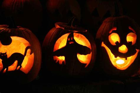 o lantern pictures jack o lantern jack o lantern pictures fall halloween pinterest