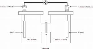 Schematic Diagram Of Mfc Fabricated Chamber System With Two Chambers Of