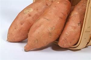Louisiana Sweet Potatoes   Information pertaining to sweet ...