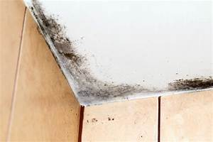 how do i remove black mold on the ceiling thriftyfun With how to deal with mold in bathroom