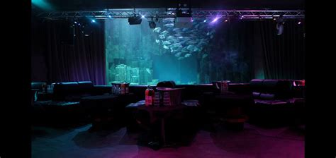 comme un poisson dans l eau 224 l aquarium club