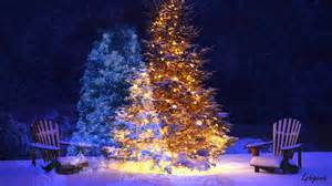 christmas trees with lights and snow youtube