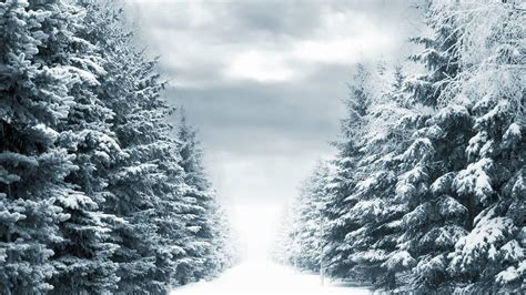 Background Images Snow by Snowy Backgrounds Wallpaper Cave