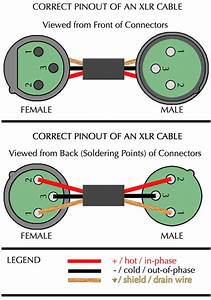 29 Xlr Wiring Diagram Wiring Diagram