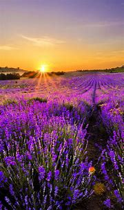 70 Beautiful Nature & Landscape iPhone 6 Wallpaper Free To ...