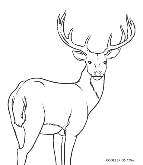printable reindeer coloring pages  kids