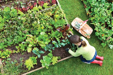Benefits Of Gardening Healing The Mind And Body Guiding