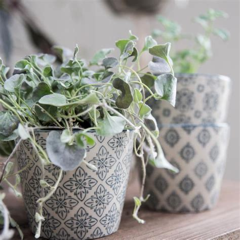 patterned stoneware flower plant pot set   grey