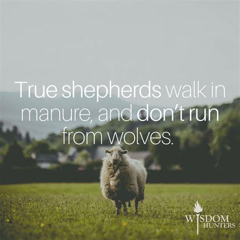 wolves  sheeps clothing wisdom hunters