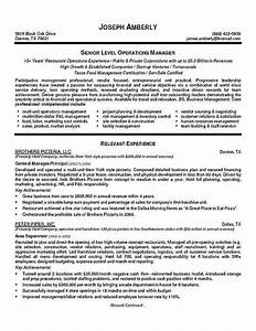 Operations manager resume example resume examples and for Software executive resume
