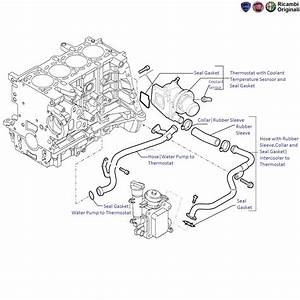 Fiat Linea 1 3 Mjd Diesel  Thermostat And Hoses Of Water Pump