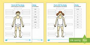 Japanese Parts Of The Body Cut And Stick Worksheet