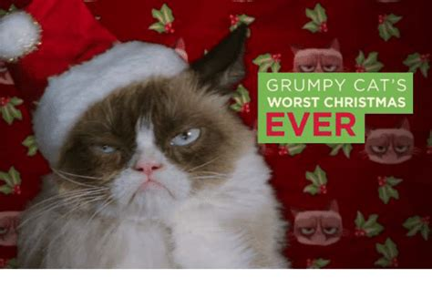 Grumpy Cat's Worst Christmas Ever  Cats Meme On Sizzle