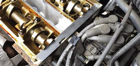 replace  timing belt   ford focus