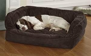 indestructible dog bed orvis driverlayer search engine With orvis indestructible dog bed