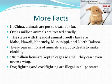 animal cruelty rm