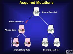 Genetic Mutations & Gene Therapy