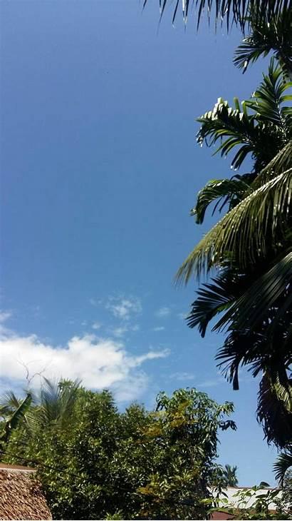 Pemandangan Siang Hari Langit Gambar Paling Populer