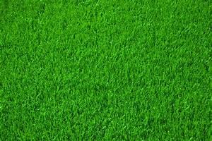 Erde Für Rasen : richtig rasen m hen mit dieser anleitung zum traumrasen ~ Lizthompson.info Haus und Dekorationen