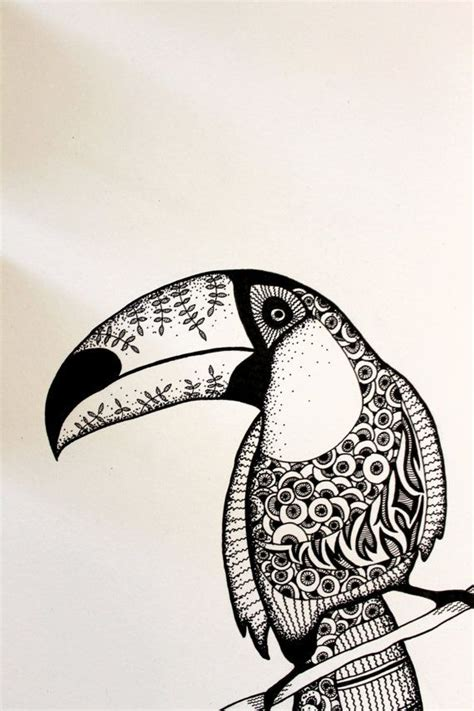 Abstract Black And White Animal Drawings by Toucan Drawing Black White Drawing In Ink Bird
