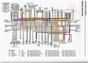 1998 Suzuki Bandit 1200 Wiring Diagram