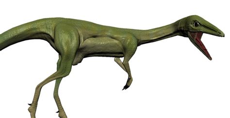 Compsognathus 3d Model Game Ready .obj .fbx .ma .mb