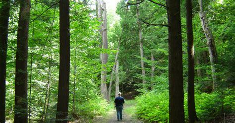 home ganaraska forest centre