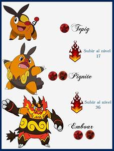 Pokemon Tepig Evolution Images | Pokemon Images