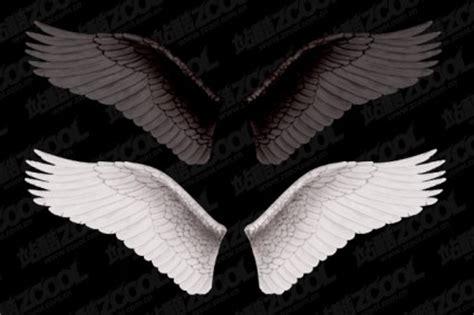 white wings  black wings layered
