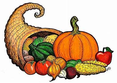 Library Crafts Scotch Plains Clipart Clipartbest Thanksgiving