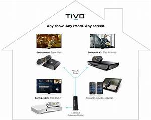 Typical Tivo Wiring Diagram   27 Wiring Diagram Images