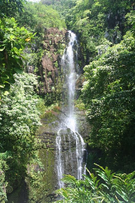 Relax and let us pamper you as a vip guest to show you the beauty on a road trip to magical hana. Waterfall on the Road to Hana, Maui, HI | Waterfall, Road ...