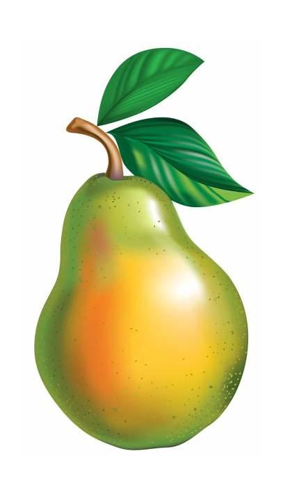 Pear Clipart Transparent Fruit Background Cliparts Clip