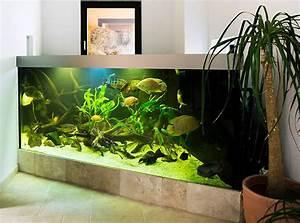 L Form Aquarium : wir gestalten ihr indiv wunschbecken aquariumbau ennigerloh aquarien und terrarien ~ Sanjose-hotels-ca.com Haus und Dekorationen