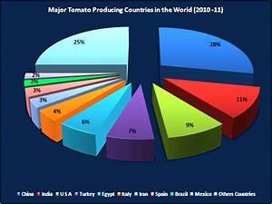 Product Profiles of TOMATO.