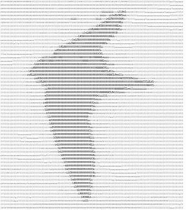 Ascii Art Birds Created Purely From Text