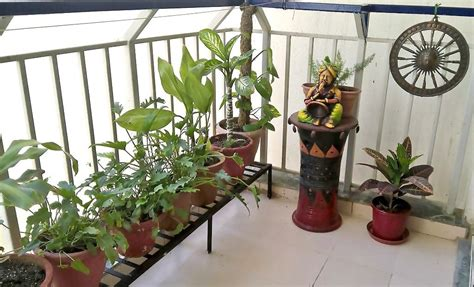 Garden Decoration India by Indian Style Balcony Decor Home Decor Inside Out Side