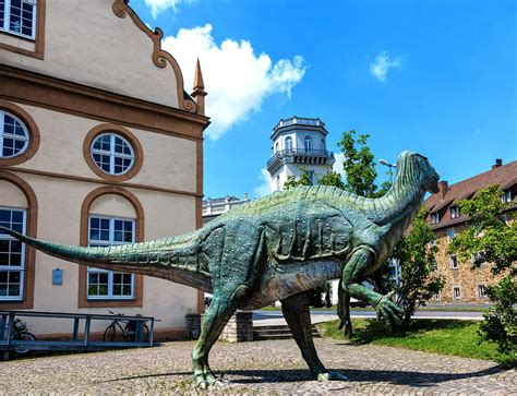 Kassel is the regional capital of north hesse in germany and has a population of about 200 000. 15 Best Things to Do in Kassel (Germany) - The Crazy Tourist