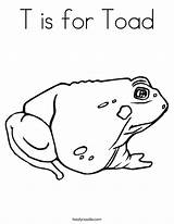 Toad Coloring Pages Printable Frog Sapo Iowa Print Hawkeye Frogs Toads Hibernate Twistynoodle Ll Getcoloringpages Built California Usa Noodle Popular sketch template